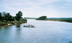 """""""Ki a Tisza vizét issza, vágyik annak szíve vissza"""", mondja a nép az Alföldet átszelő folyóról"""